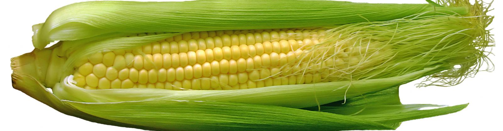 Darmklachten in het buitenland door High Fructose Corn Syrup